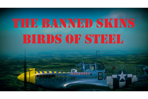 The Banned Skins of Birds of Steel - YouTube