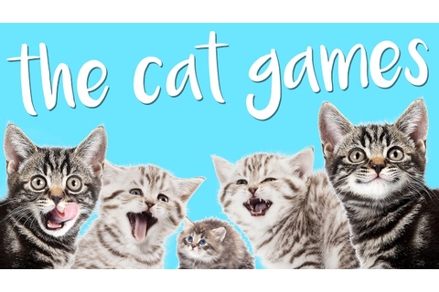 BEST GAME EVER MADE!! | The Cat Games - YouTube