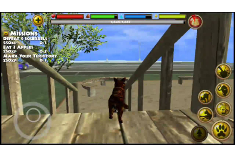 Stray Cat Simulator By Gluten Free Games - Android & iOS ...