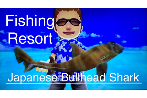 Let's Play: Fishing Resort Wii, Japanese Bullhead Shark ...