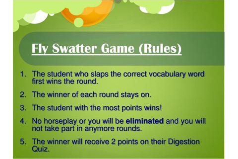 PPT - Fly Swatter Game (Rules) PowerPoint Presentation ...
