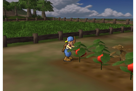 Harvest Moon - Save the Homeland (USA) ISO