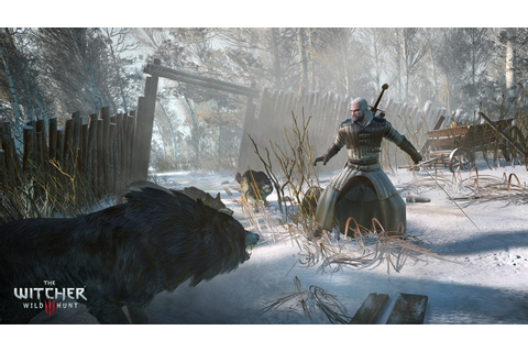 New The Witcher 3: Wild Hunt Screenshots - IGN