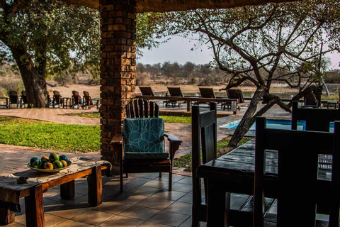 South Africa: Review Gomo Gomo Game Lodge (Klaserie ...