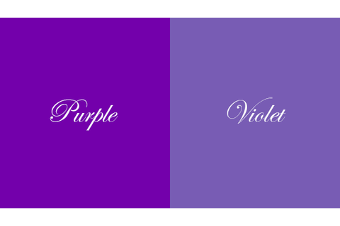 Violet Backgrounds 600x338 - Full HD Wall