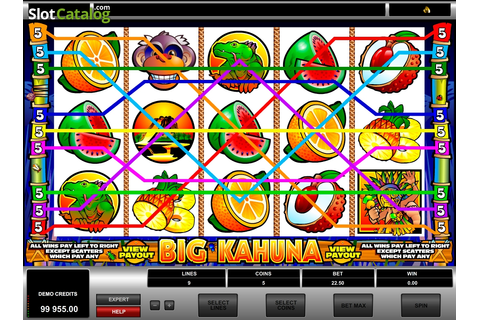 Big Kahuna Slot ᐈ Claim a bonus or play for free!