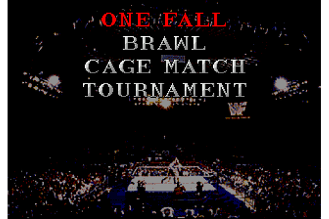 WWF: Rage in the Cage (1994) by Sculptured Software Mega ...
