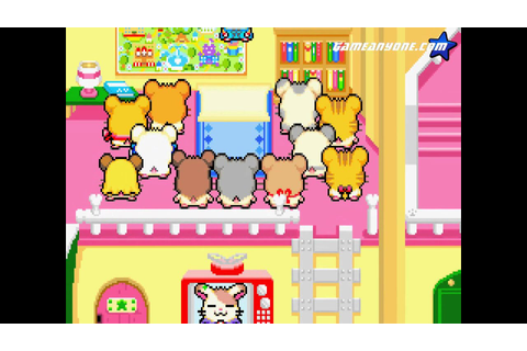 Let's Play Hamtaro: Rainbow Rescue: Part 1 - Mr. Rainbow ...