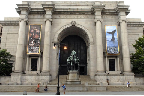 Museum of Natural History | Jaden's Adventures Wiki ...