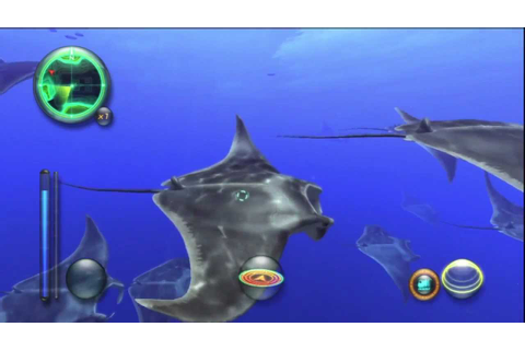 Aquanaut's Holiday: Hidden Memories - Manta Ray Migration ...