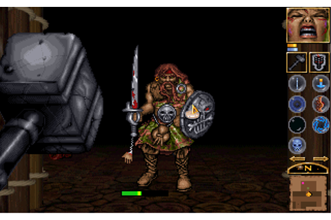 Anvil of Dawn Screenshots for DOS - MobyGames