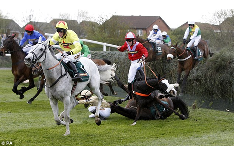 Grand National 2012 horse deaths: Ban this cruel spectacle ...