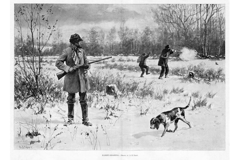 RABBIT HUNTING BY A. B. FROST BEAGLE TRACKING SHOOTING ...