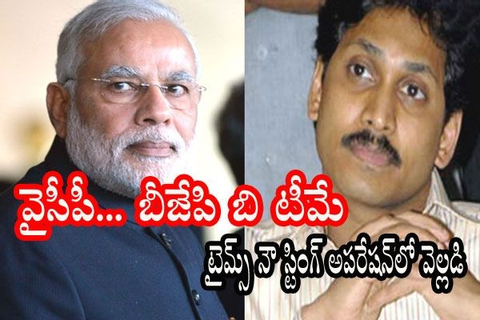 YCP To Field Weak Candidates in BJP Seats - Sting ...