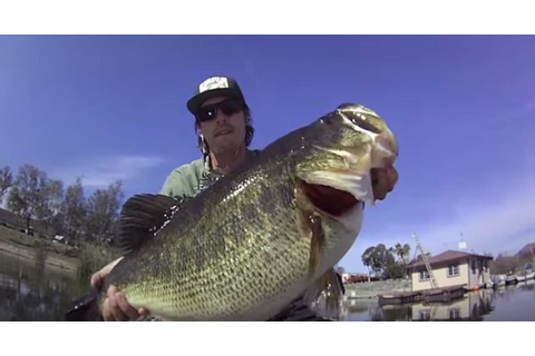 Here's That Giant 12-Pound Dock Monster Bass You've Been ...