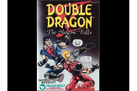 Double Dragon V: The Shadow Falls - Game Manual (SNES ...
