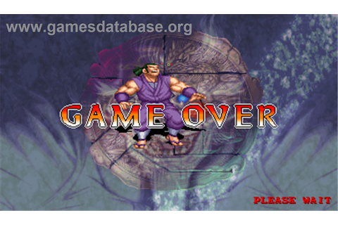 Dragoon Might - Arcade - Artwork - Game Over Screen