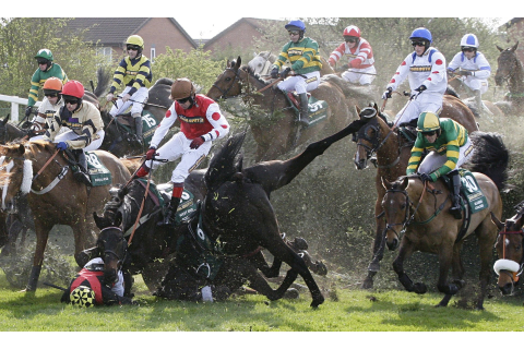 Run to the death - Should we ban the Grand National?