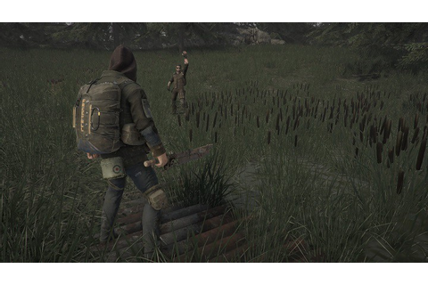 Last Survivor is plagued by graphics issues: low FPS rate ...
