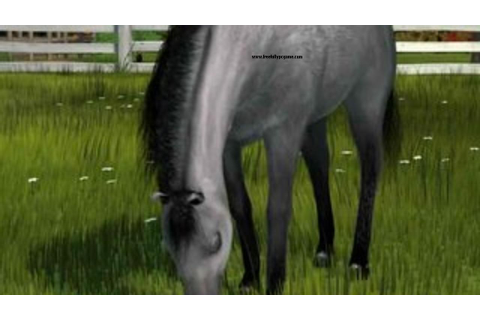 Pony Friends 2 Pc Game Free Download Full Version ...